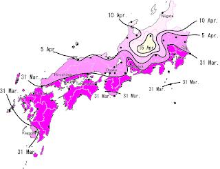 Sakura En 20080305